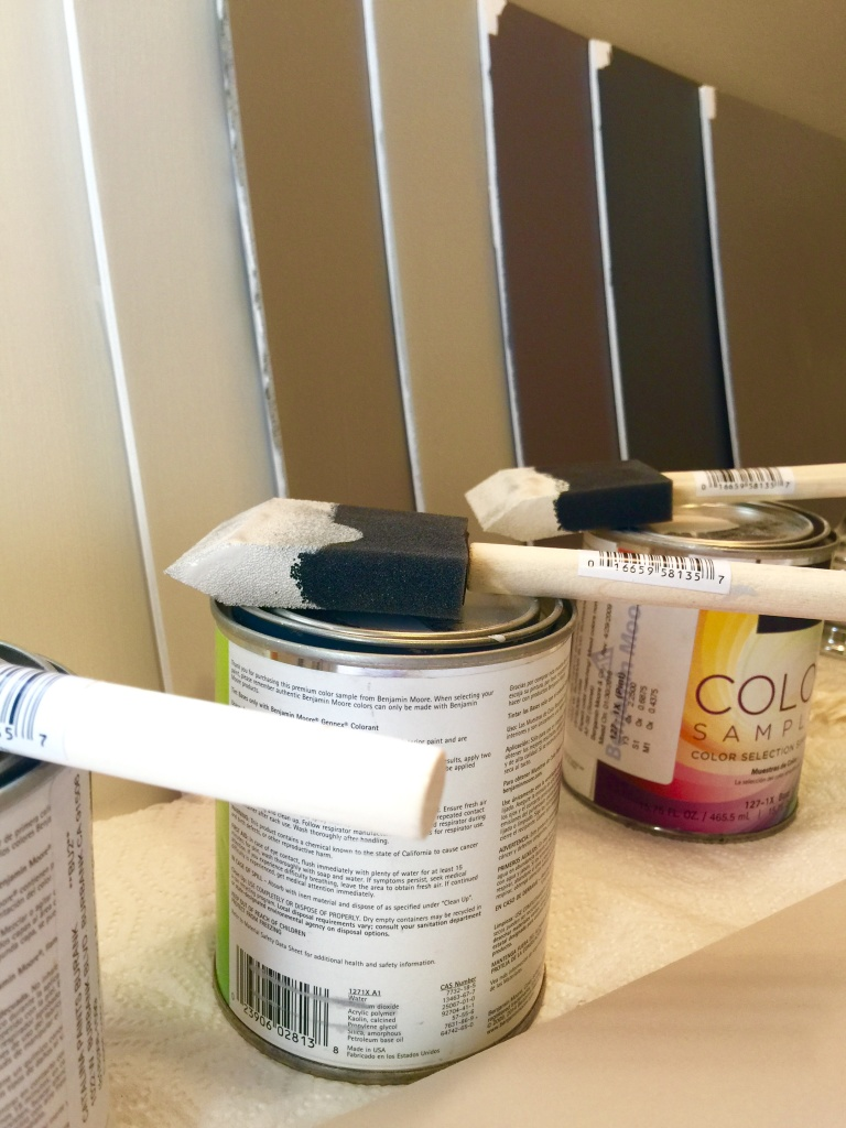 color boards and foam brushes